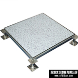 Anti-Static AllSteel Raised Floor